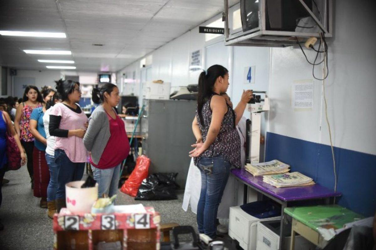 Se ha ligado a casos de microcefalia. Foto:AFP. Imagen Por: