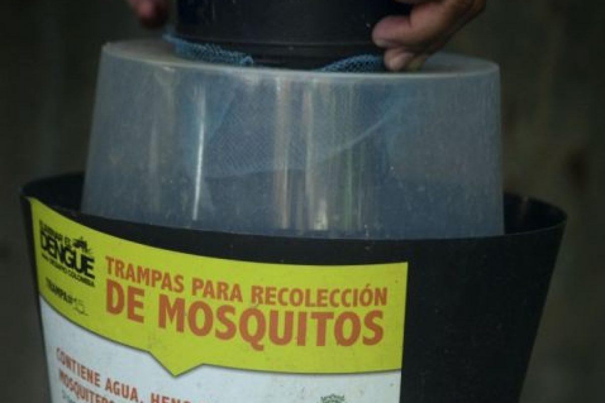 Las autoridades de salud señalan que la mejor forma de prevenir el virus es protegerse de la picadura del mosco. Foto:AFP. Imagen Por: