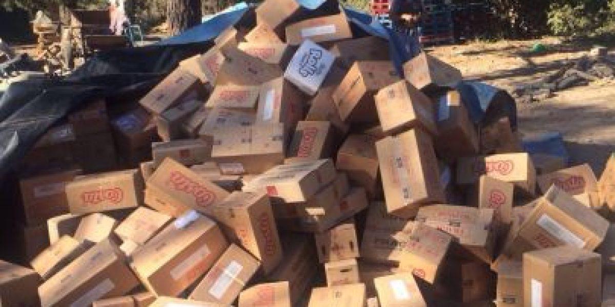 Carabineros recuperó camión y $50 millones en mercadería robados