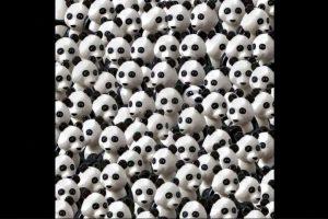 Un perro se esconde entre estos pandas. Foto:Vía Twitter.com. Imagen Por: