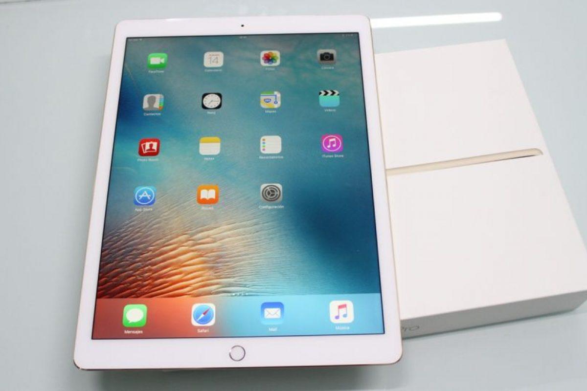 iPad Pro en vertical. Foto:Nicolás Corte. Imagen Por: