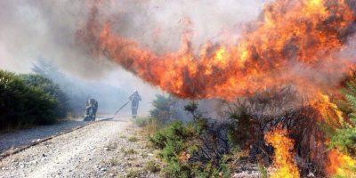 Conaf: más del 70% de los incendios forestales se originan por accidentes