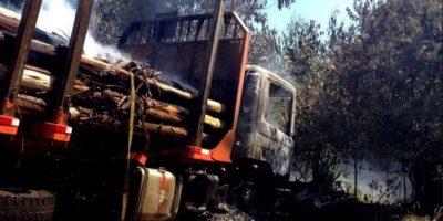 La Araucanía: nuevo atentado incendiario afectó a maquinaria de empresa forestal