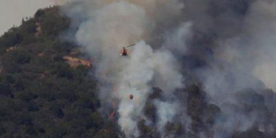 La Ligua: alerta amarilla por incendio forestal que ha consumido 80 hectáreas
