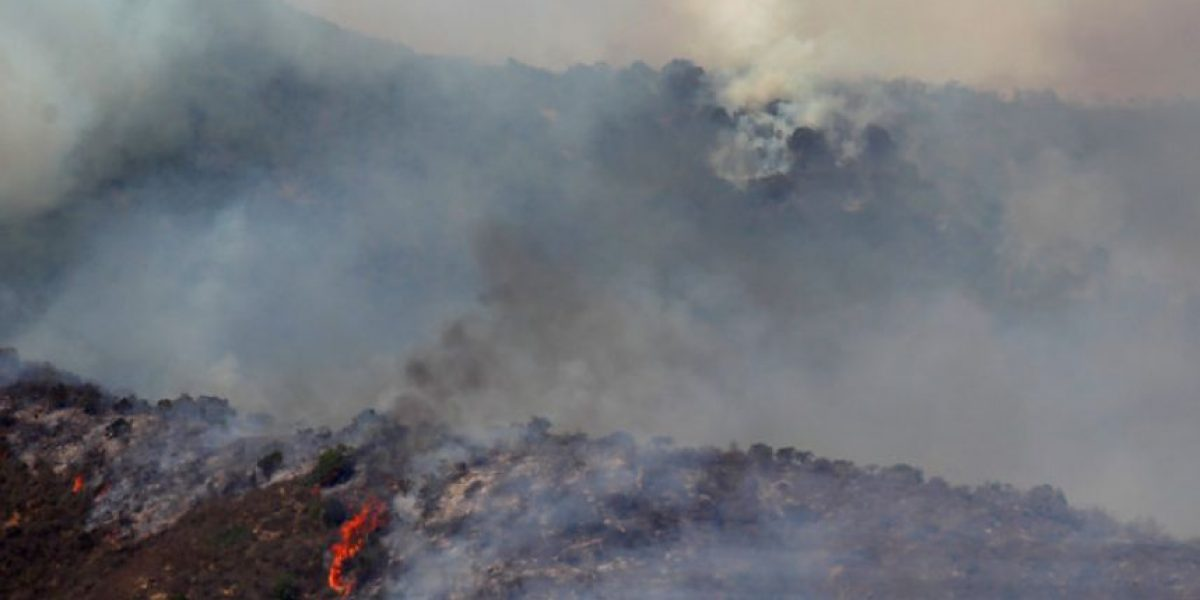 Alerta Roja por incendio: fuego ha consumido 380 hectáreas en La Ligua