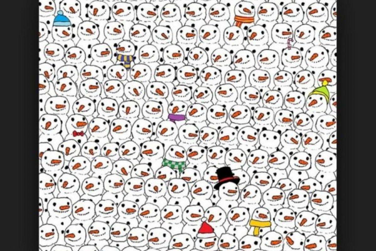 Logran ver otro panda Foto:Vía Twitter. Imagen Por: