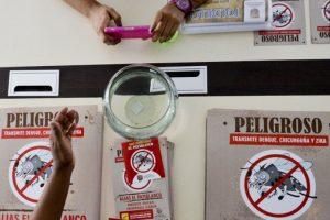 El virus Zika ha puesto en alerta a la comunidad médica internacional Foto:AFP. Imagen Por: