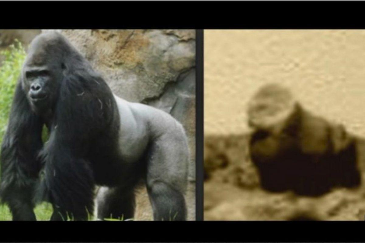 Aficionados aseguran que encontraron a un gorila en el suelo marciano Foto:NASA. Imagen Por: