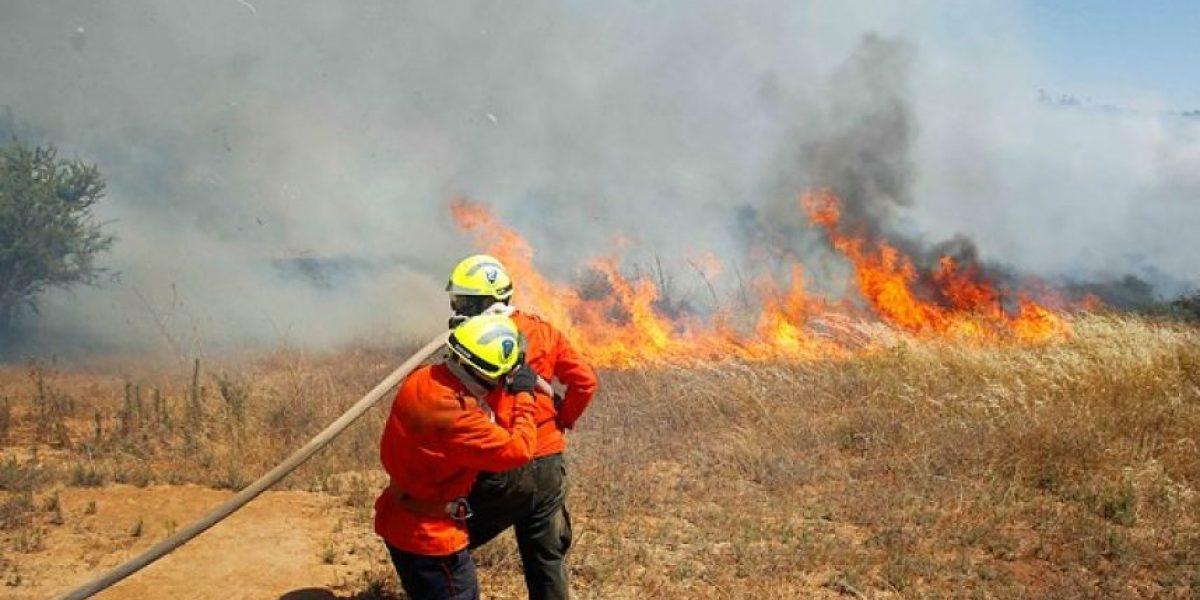 Decretan alerta amarilla en Río Claro por incendio que amenaza a Ruta 5 Sur