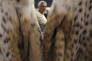 Fue acusada de usar ropa de animales despellejados vivos. Foto:Getty Images. Imagen Por: