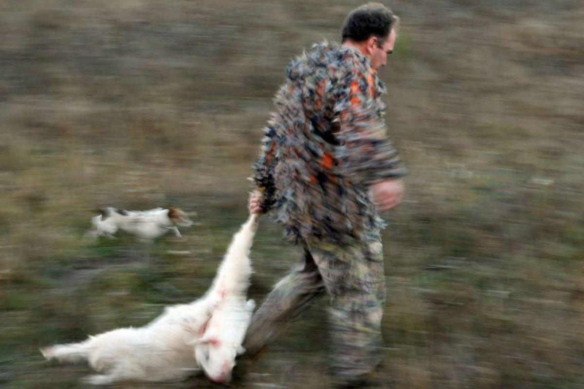 Lucero y su novio, Michel Kuri, posaron con rifle en mano al lado de una cabra montés muerta. Foto:Getty Images. Imagen Por: