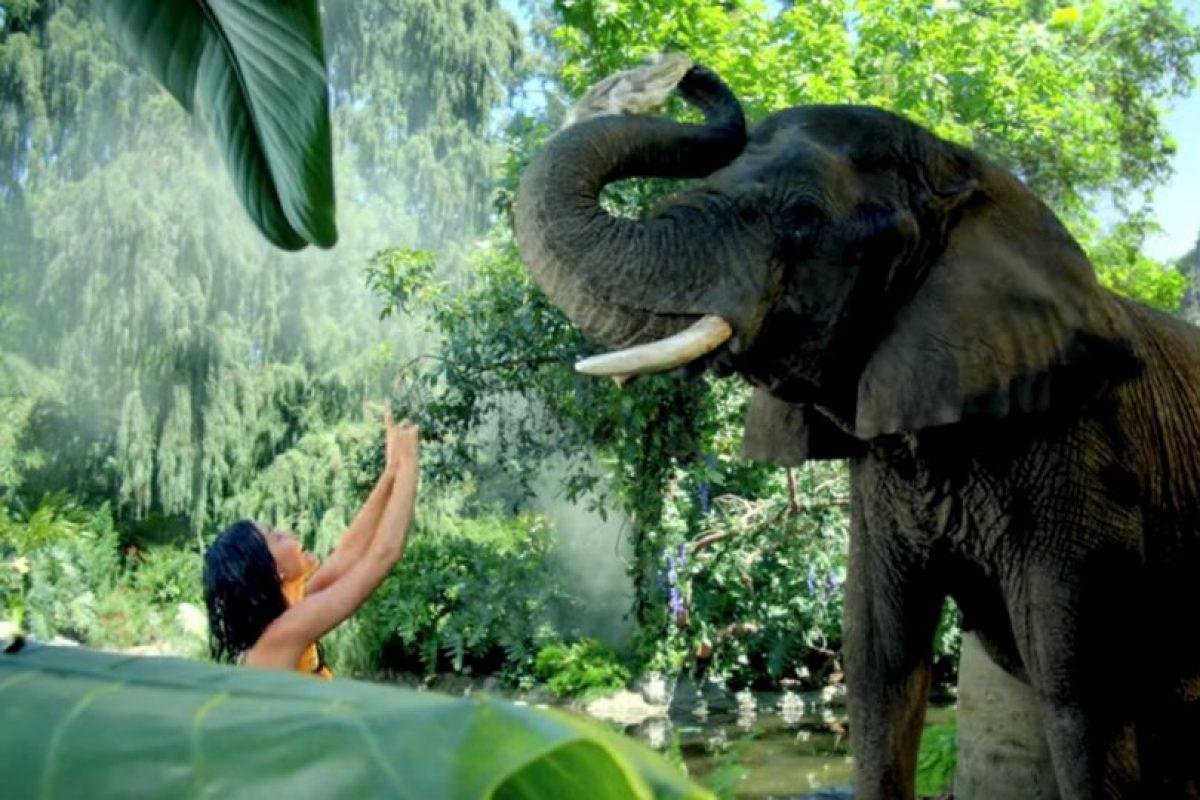 """Luego del lanzamiento de su video """"Roar"""", la organización """"Peta"""" criticó algunas imágenes donde Katy se encontraba rodeada de animales exóticos. Foto:Katy Perry VEVO. Imagen Por:"""