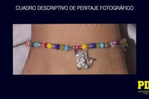 Foto:PDI. Imagen Por:
