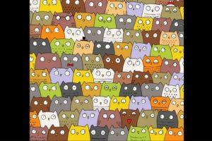Un gato se esconde entre los búhos. Foto:Vía Twitter.com. Imagen Por: