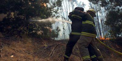 Incendio forestal en San Felipe amenaza a santuario de la naturaleza
