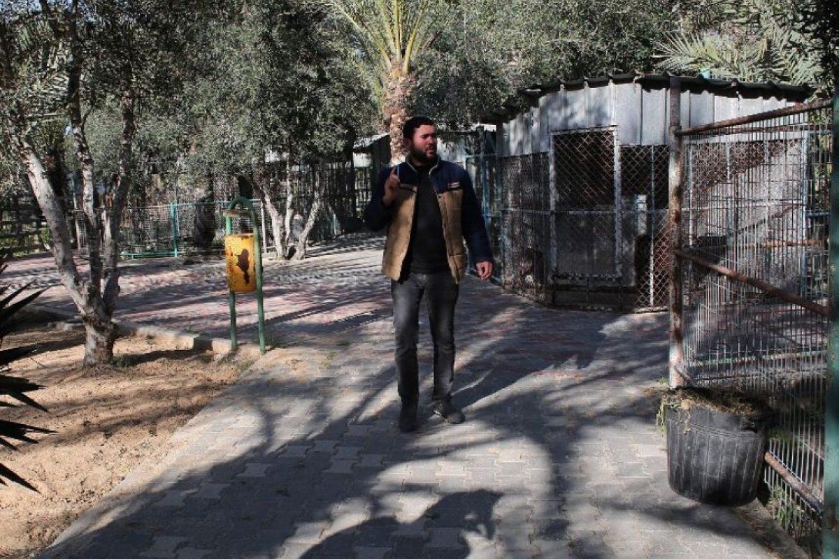 Muchas de las jaulas ya fueron abandonadas Foto:AFP. Imagen Por:
