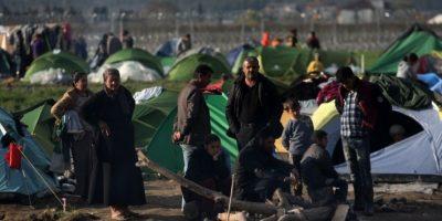 Conozcan a los migrantes más