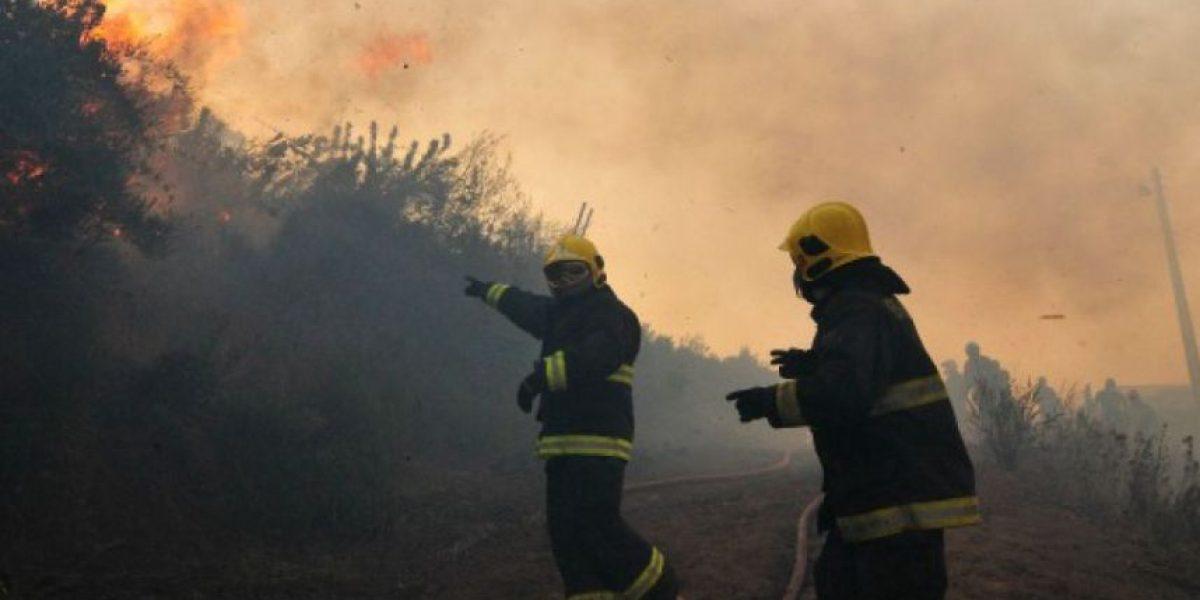 Declaran alerta roja para la comuna de Palena por incendio forestal