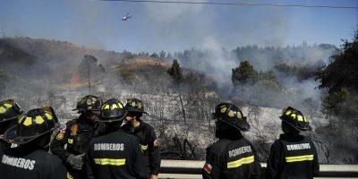 Onemi reporta 19 incendios forestales activos en cinco regiones del país