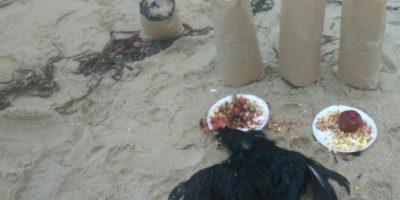Terror en El Tabo por restos de presunto ritual satánico encontrados en la playa