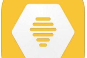 4- Bumble App. Foto:Bumble App. Imagen Por: