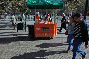 Foto:Luis Hidalgo (Municipalidad de Santiago). Imagen Por: