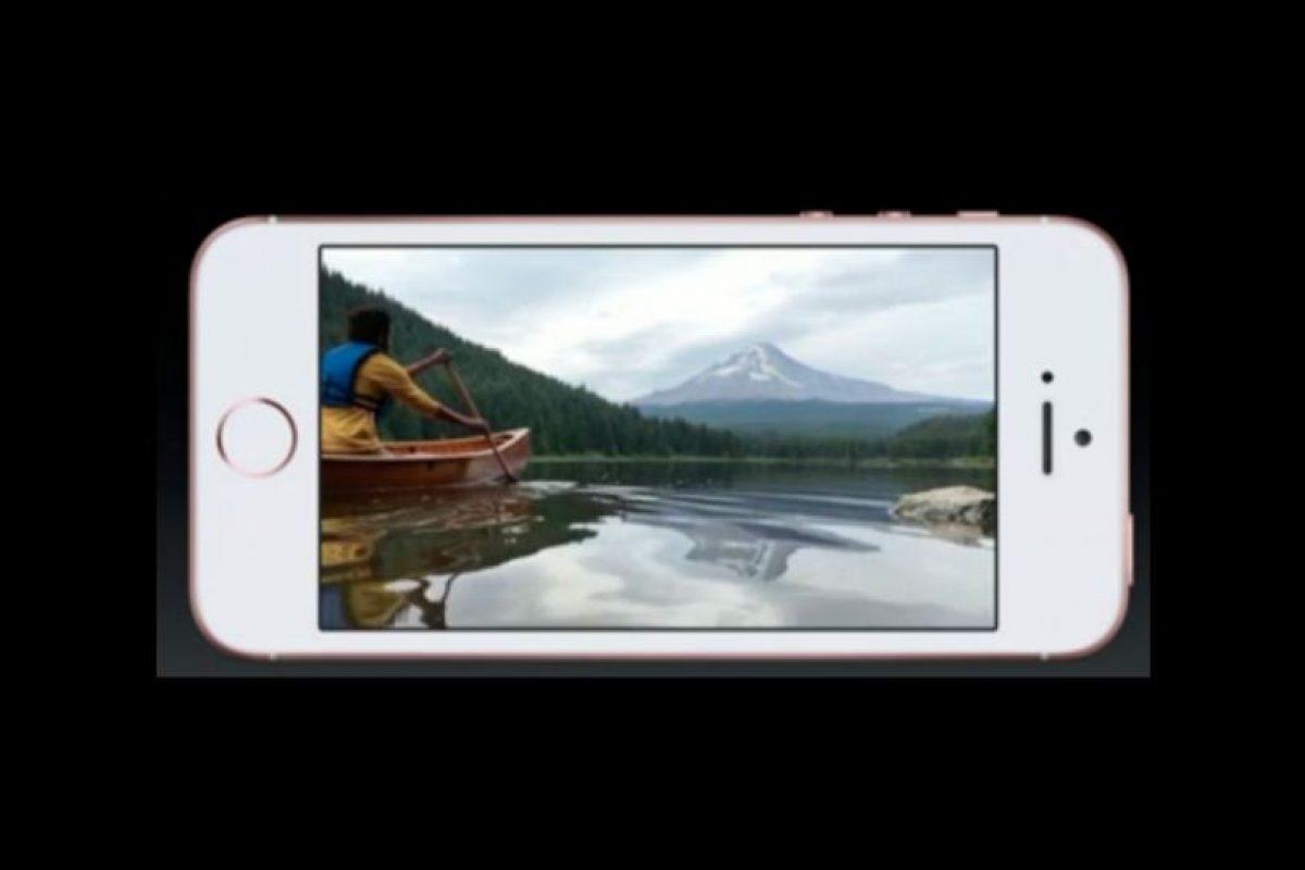 iPhone SE. Foto:Apple. Imagen Por: