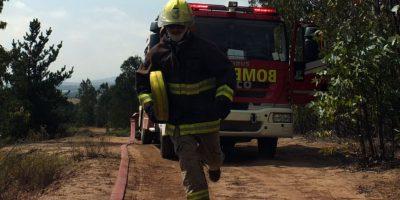 Se mantiene alerta roja por incendio forestal en la comuna de Punta Arenas