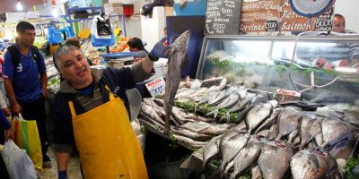 Semana Santa: Más de 26 toneladas de pescados y mariscos en mal estado