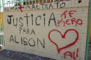 Foto:Rodrigo Fuentes / Publimetro. Imagen Por: