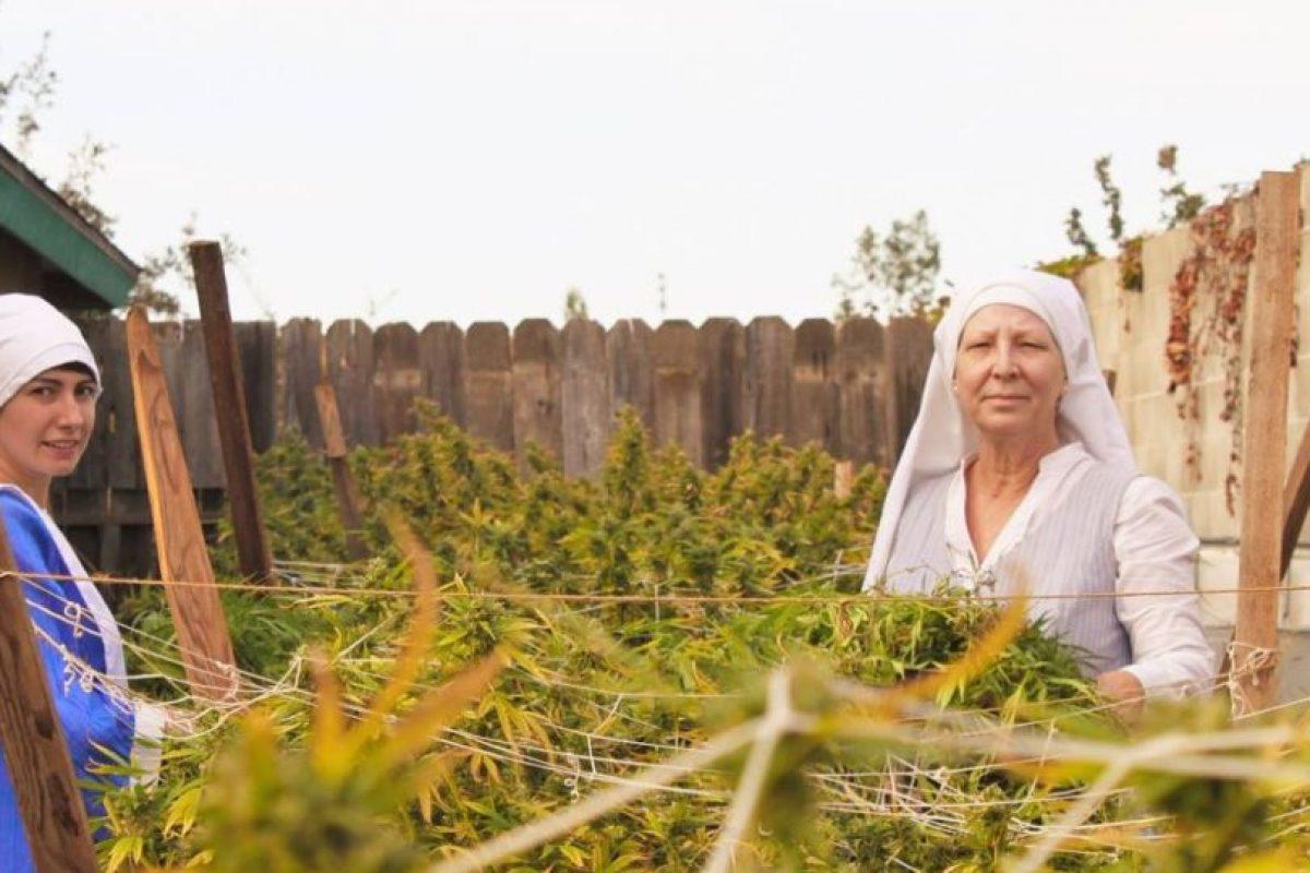 El uso de la marihuana puede tener una amplia gama de efectos en la salud física y mental. Foto:instagram.com/sistersofthevalley/. Imagen Por: