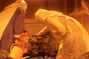 De acuerdo con la DEA, es la droga más usada en los Estados Unidos Foto:facebook.com/sistersofthevalley. Imagen Por: