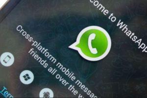 Ahora WhatsApp permite ser tester para sus nuevas versiones. Foto:Tumblr.com. Imagen Por: