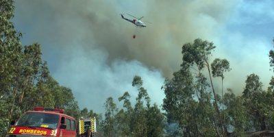 Declaran alerta roja por incendios forestales en la Región de Los Lagos