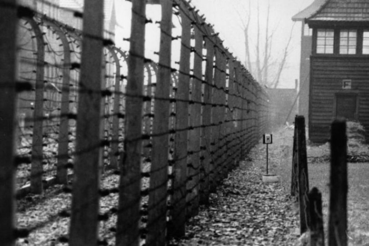 Imagen de Auschwitz.. Imagen Por: