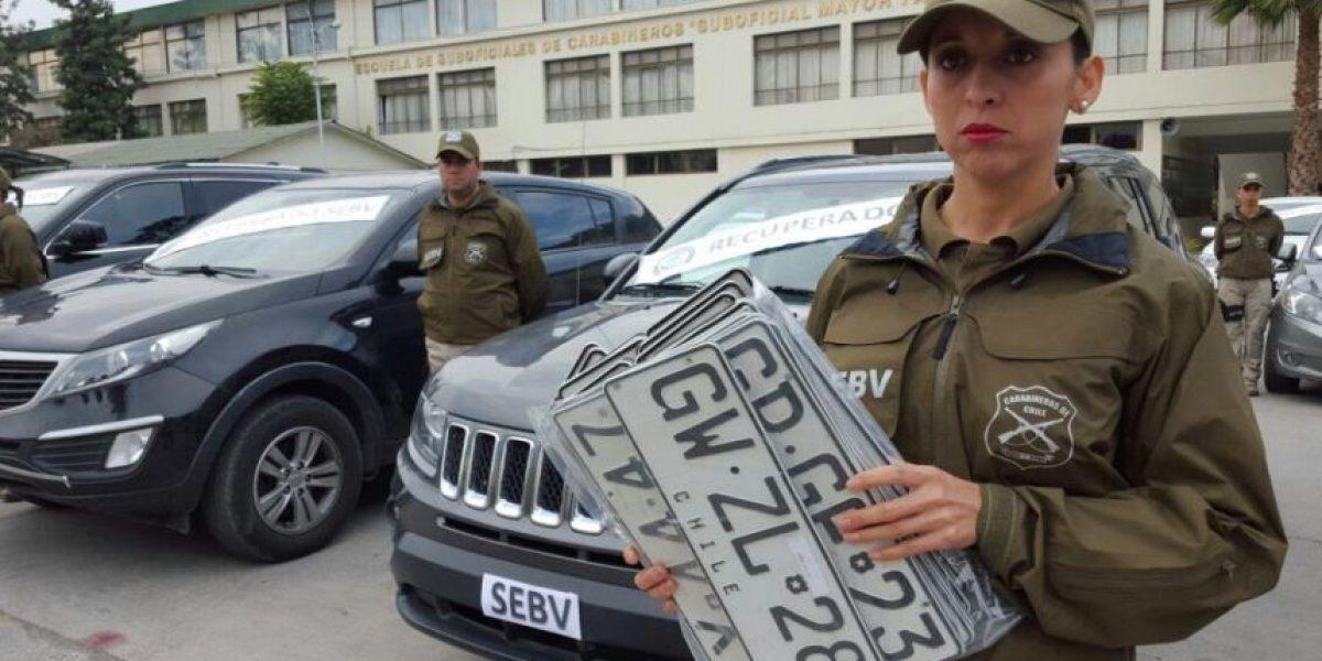 Carabineros recupera 41 vehículos y desbarata organización dedicada a vender autos robados