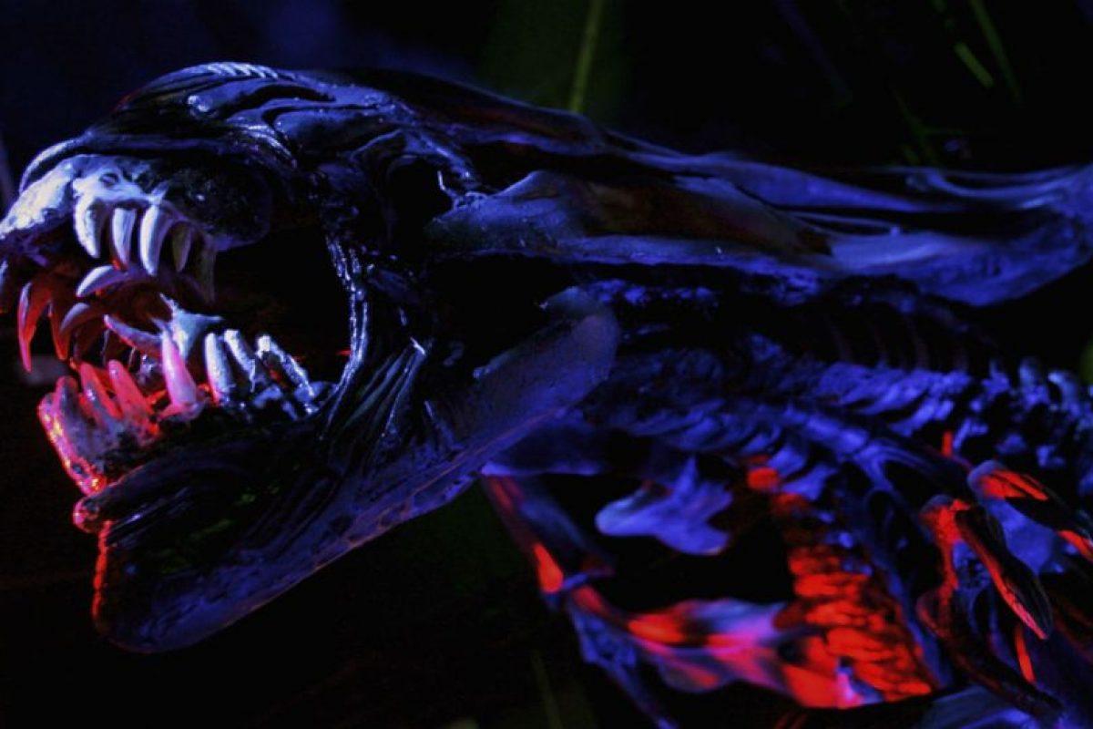 Este modelo de tenis aparecen en la película 2 de la saga Alien. Foto:Getty Images. Imagen Por: