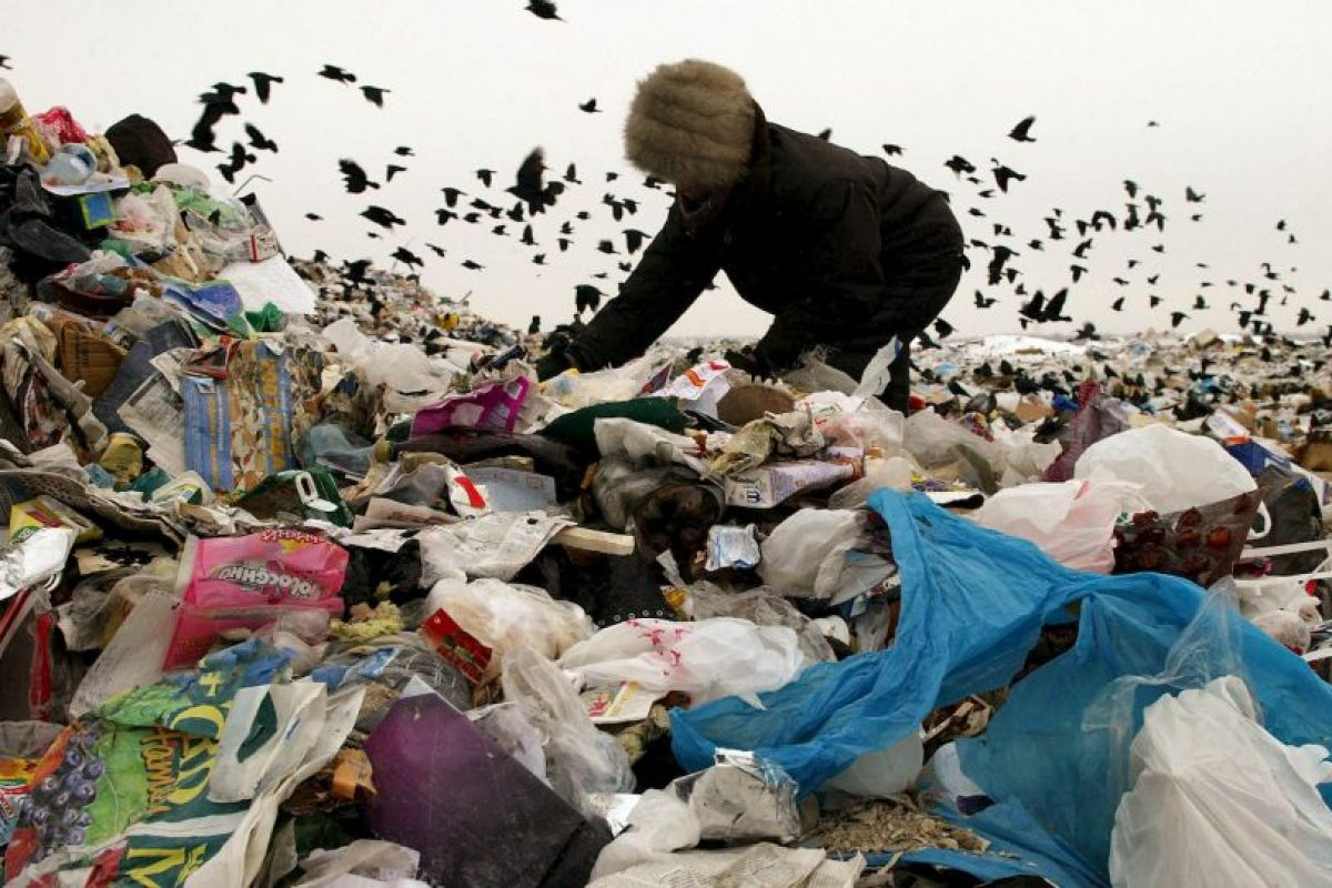 Equivale a cerca de mil 300 millones de toneladas al año. Foto:Getty Images. Imagen Por: