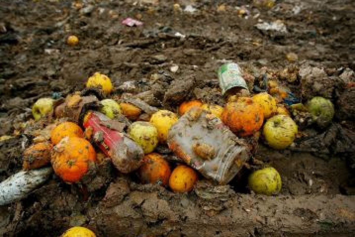 Desde la producción agrícola inicial hasta el consumo final en los hogares. Foto:Getty Images. Imagen Por: