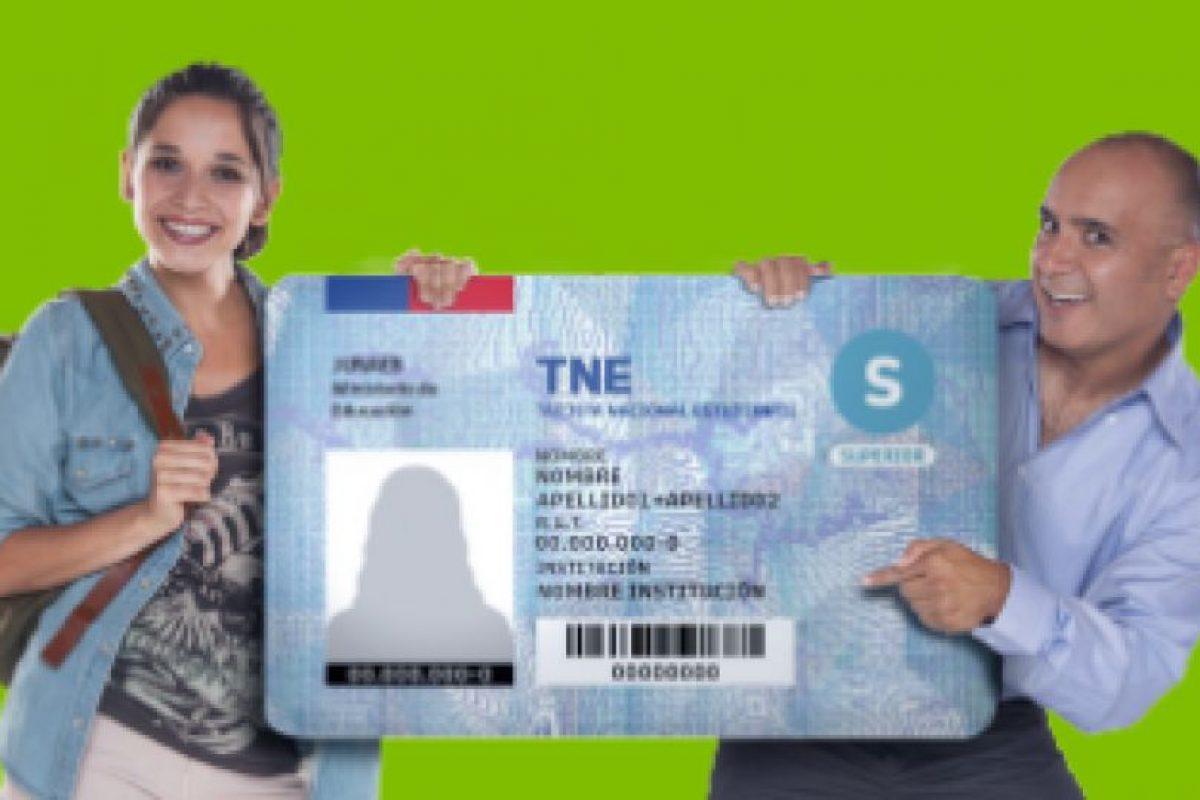 Foto:Reproducción web TNE. Imagen Por: