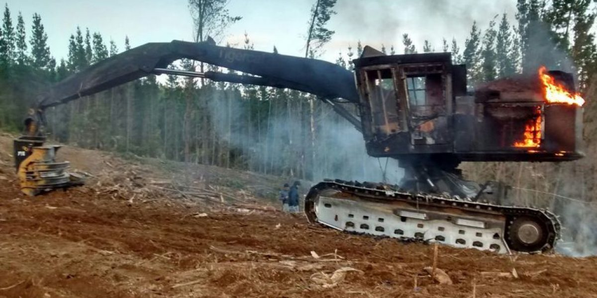 Avalúan en $400 millones pérdidas por nuevo ataque incendiario en La Araucanía