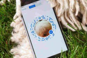 Gracias a Messenger puedes usar más fácilmente tu inbox de Facebook. Foto:Facebook. Imagen Por: