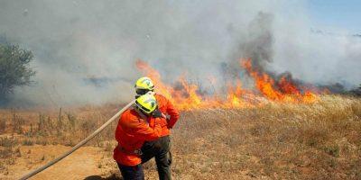 Onemi: quince incendios forestales activos afectan al sur del país