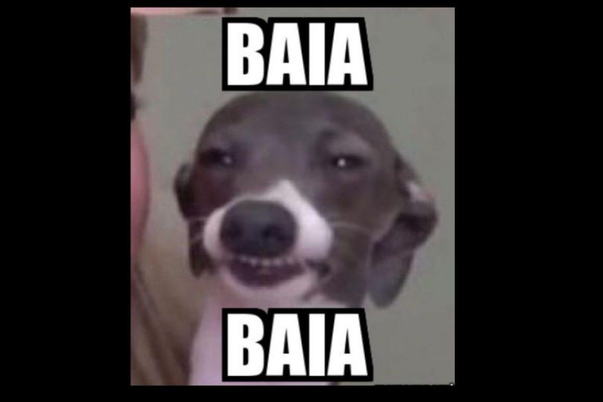 "Pero su ""baia baia"" ha sido transmitido a otros memes. Foto:vía Twitter. Imagen Por:"