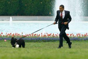 Las mascotas de los líderes mundiales Foto:Getty Images. Imagen Por: