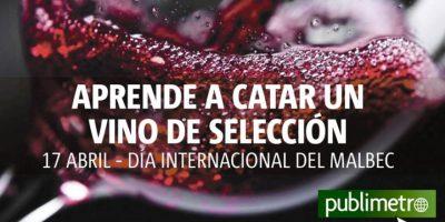 Infografía: aprende a catar un vino de selección