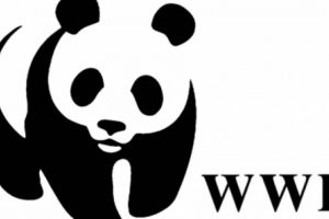 Esta organización tiene alcance mundial y se dedica a detener la degradación del planeta. Foto:WWF. Imagen Por: