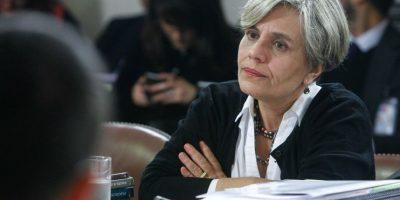 Directora de Instituto DDHH sobre conflicto Mapuche: