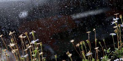 Precipitaciones en zona central se mantendrían hasta el mediodía del domingo