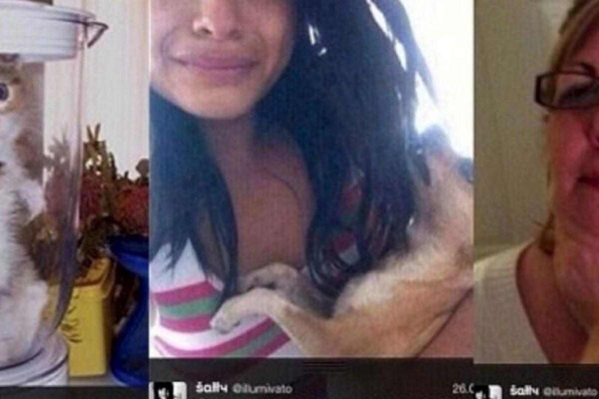 """Una fan de One Direction dijo que mató a su chihuahua porque la banda no le respondió sus peticiones de seguirla en Twitter. Solo decía """"Síganme o mato a mi perro"""". Luego le escribió a Lyam Payne """"Sígueme. Mi perro murió"""" y mostraba la foto de un perro muerto. Pero todo fue una farsa, ya que las fotos eran tomadas de Internet. Sin embargo, muchos quieren darle una lección: ya hay 3 mil firmas para que ella vaya a prisión. Foto:vía Oddee. Imagen Por:"""